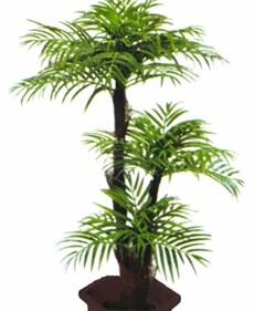 köpa palmer på nätet